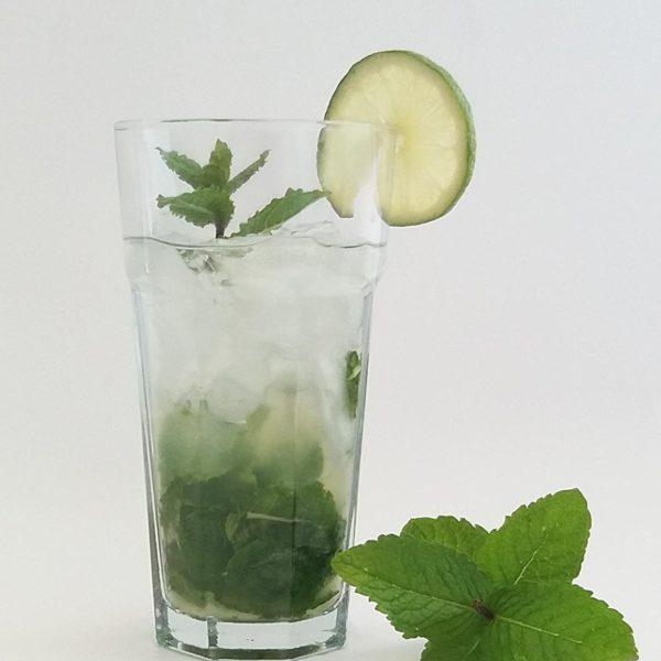 6 verres à Mojito 400 ml