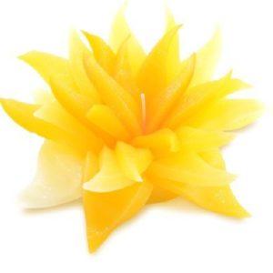 Bougie de Fleur au Parfum Naturelle – Senteur Citron